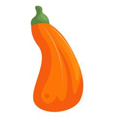 cartoon orange pumpkin isolated on white vector image
