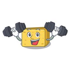 Fitness gouda cheese character cartoon vector