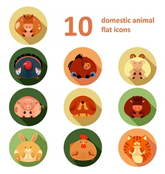 Flat animals vector image