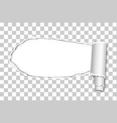 Oblong snatched hole from left to right vector