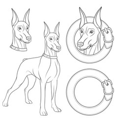 Set of with a doberman in a collar vector