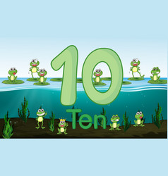 ten frog at pond vector image