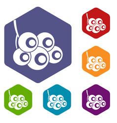 Viburnum branch icons set hexagon vector