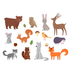 wood animals cute wild characters in forest fox vector image