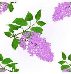 seamless texture lilac twig with flowers vector image
