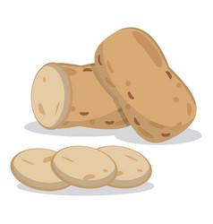 organic healthy food potato image vector image vector image