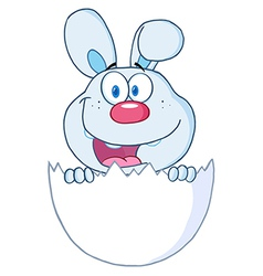 Surprise Blue Bunny Peeking Out Of An Easter Egg vector image