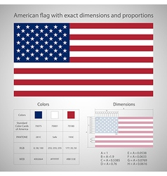 American flag with exact dimensions vector image