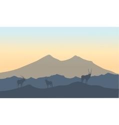 Antelope in hills scenery of silhouette vector