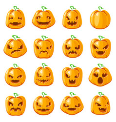 Decoration halloween jack o lantern pumpkin scary vector