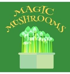 Magic mushrooms grow kit vector image