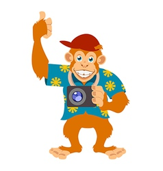 Monkey with a cam vector