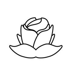 rose flower decorative outline vector image