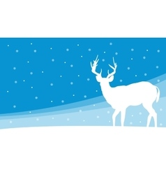 Silhouette of deer on hill winter vector image vector image