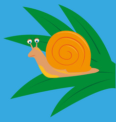 cartoon snail sits on green leaves vector image