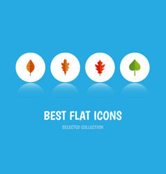 flat icon leaves set of foliage frond linden and vector image