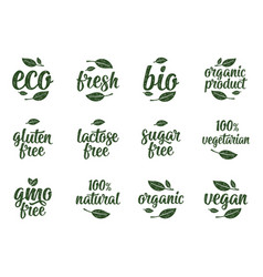 Gluten lactose sugar gmo free lettering sign vector