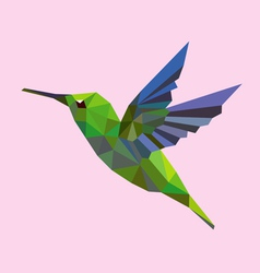 Humming bird low polygon vector image