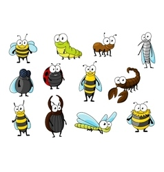Cartoon funny insect animals characters vector image vector image