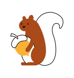 autumn season squirrel acorn nut forest vector image