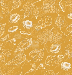 Autumn seamless pattern with leaves and seeds on vector image