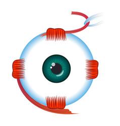 Eye icon cartoon style vector