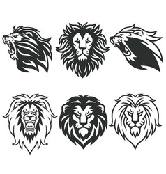 lion logo package premium design collection set vector image