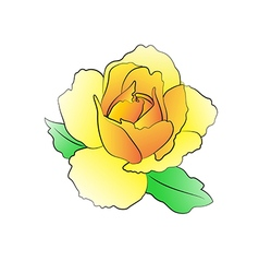 Rose light yellow vector