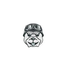vintage cartoon dog on white background vector image