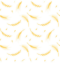 wheat pattern on a white background vector image