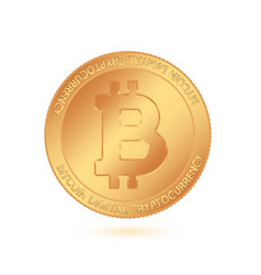 Bitcoin world-famous digital currency the image vector