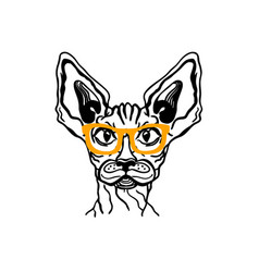 cat sphynx in glasses printable cat animal vector image