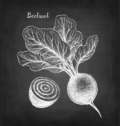 chalk sketch beetroot vector image