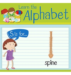 Flashcard letter S is for spine vector