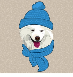 Hipster Samoyed dog smile vector