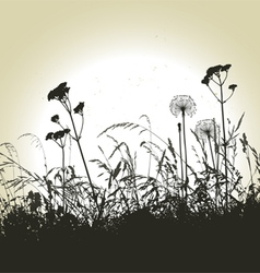 Meadow weeds and dandelions silhouettes vector image