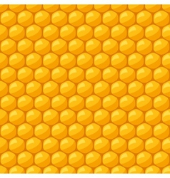Seamless pattern with bee honeycombs and honey vector