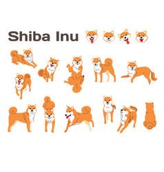 Shiba inudog in action vector