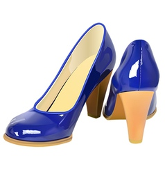 high heel shoes vector image