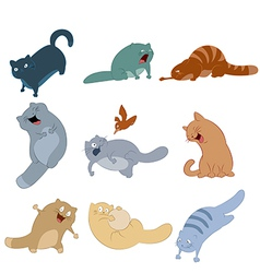 Colection of cats vector image vector image