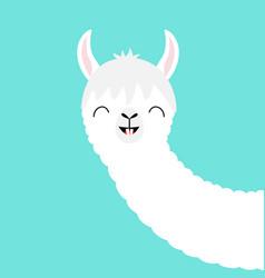 alpaca llama animal face cute cartoon kawaii vector image