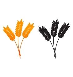 Ears of Wheat Barley or Rye vector