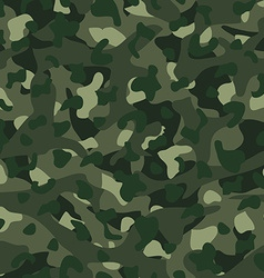 Green mountain disruptive camouflage seamless vector image