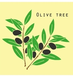 Two olives branches vector image