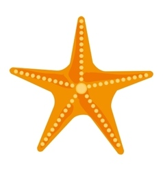 colorful ocean starfish graphic vector image