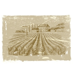 hand drawn wineyard vector image