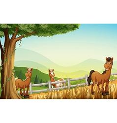 Horses at the hill near the tree vector