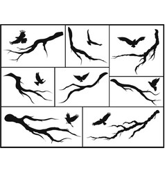 set of branches and birds vector image