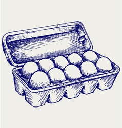 Eggs in a carton package vector image