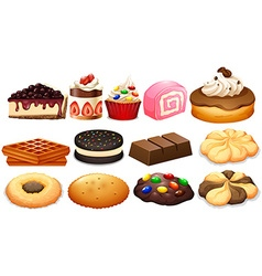 Dessert set with cake and cookies vector